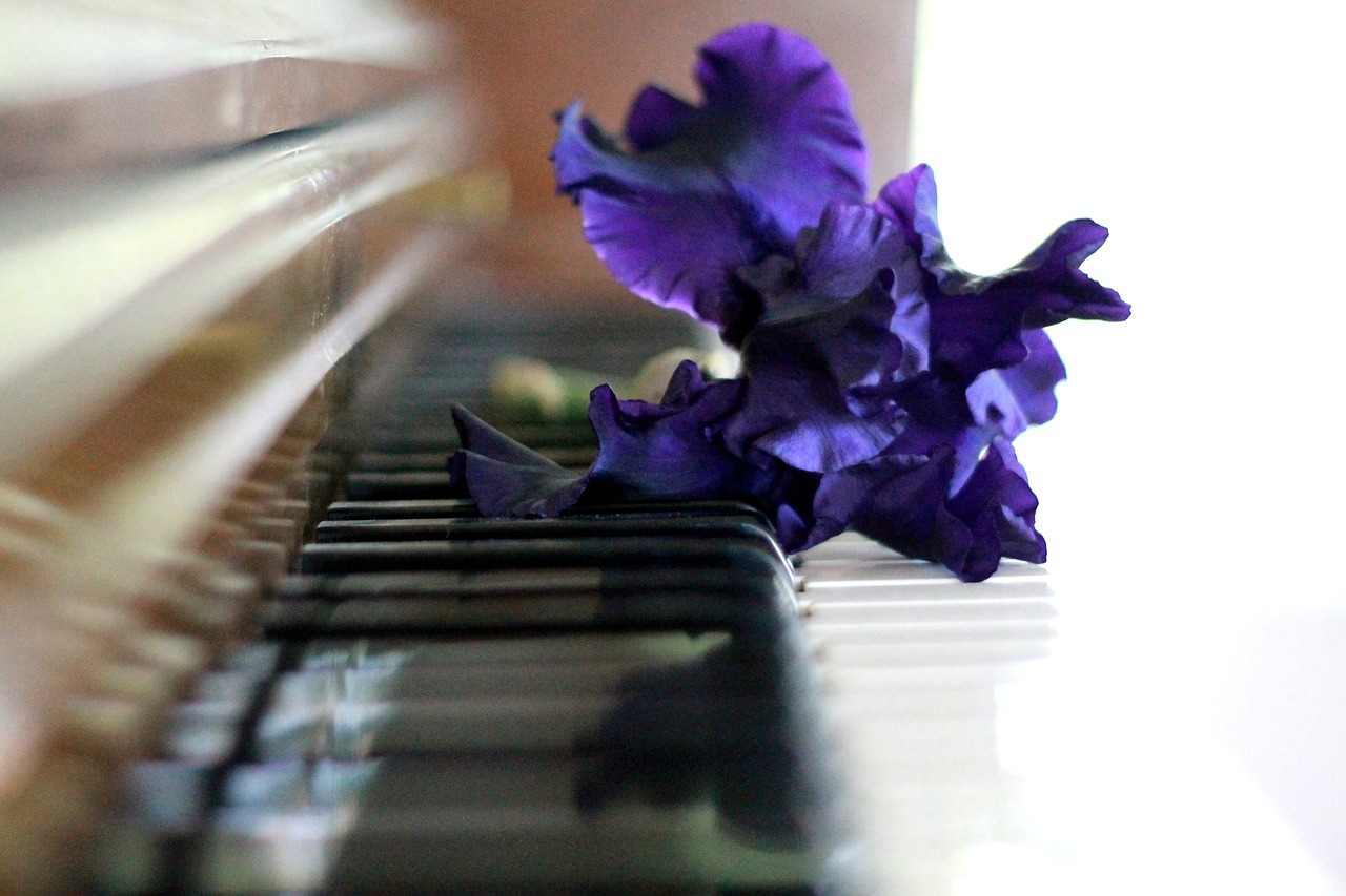 5 Positive Effects of Classical Music